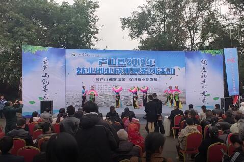 芦山县举办2019年就业创业成果展